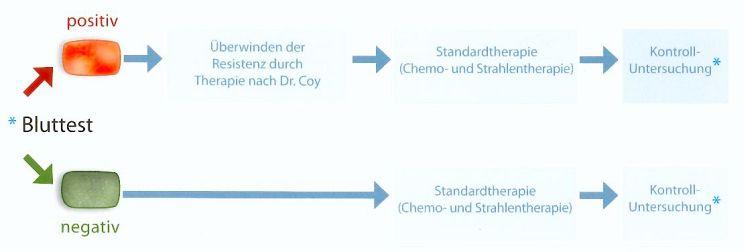 Grafik zum Ablauf nach einem Bluttest, je nachdem ob Fund und Nichtfund von Resistenz