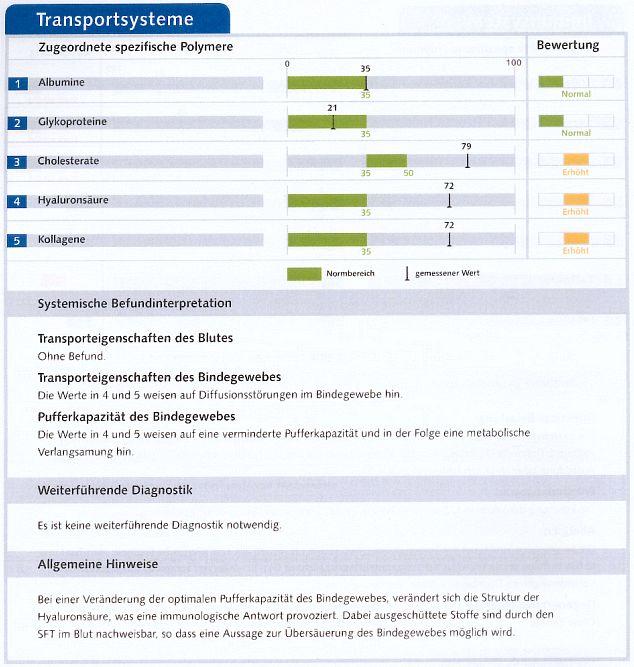 Tabelle mit grafischer Darstellung der Werte der Transportsysteme